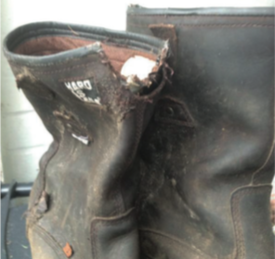 dcf07203e9a Buckler Boots v Hungry Fox - Buckler Boots